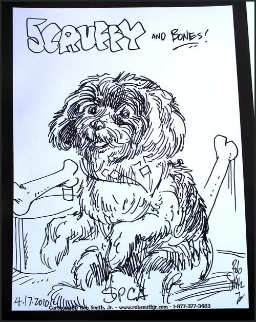 2010-0417-spca-scruffy
