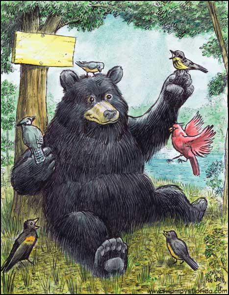 2015-0801-Ocklawaha-Bear-4